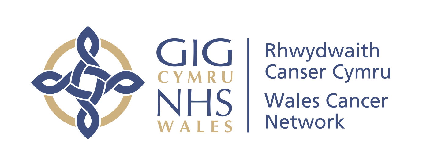 Welsh Government launches Cancer Delivery Plan to 2020 | North Wales